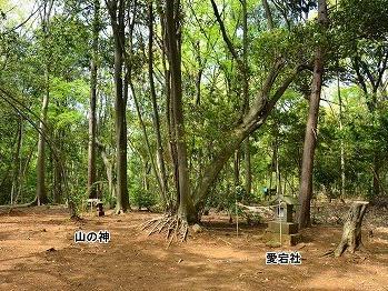 愛宕神社(東京都東大和市蔵敷)