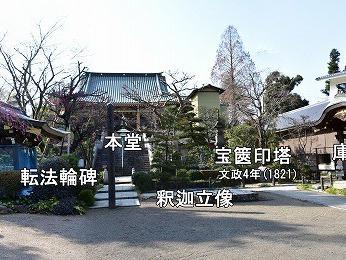 円乘院 3 中庭正面