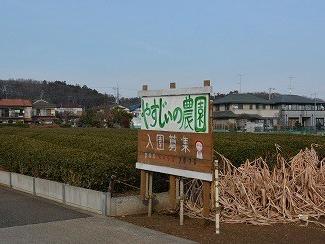 狭山丘陵の古狸往生記(よもやま話)