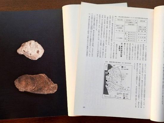 大まかな歴史の流れ 1 地質