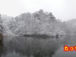 大雪が降った・・