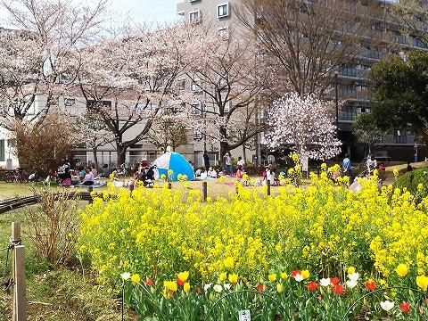 玉川上水駅周辺の風景67
