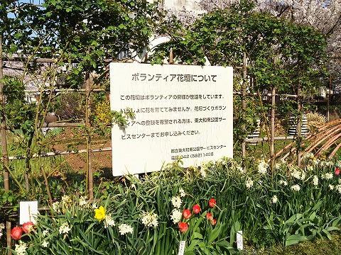 玉川上水駅周辺の風景69