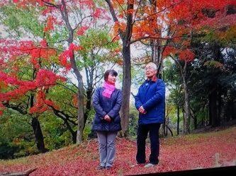 紅葉の多摩湖畔湖を歩く