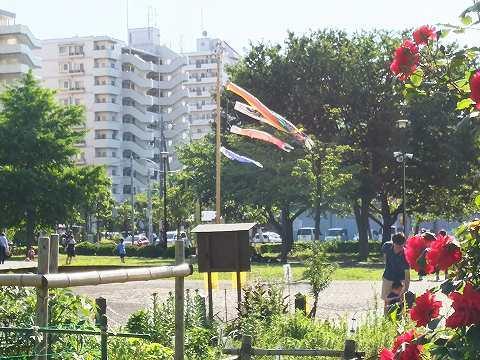 玉川上水駅周辺の風景73