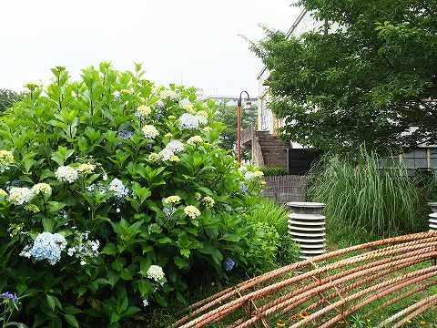 玉川上水駅周辺の風景80