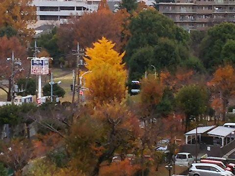 玉川上水駅周辺の風景106