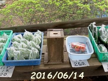 直売所に夏野菜