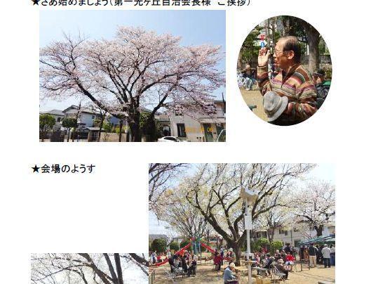 第一光ヶ丘自治会 桜祭り