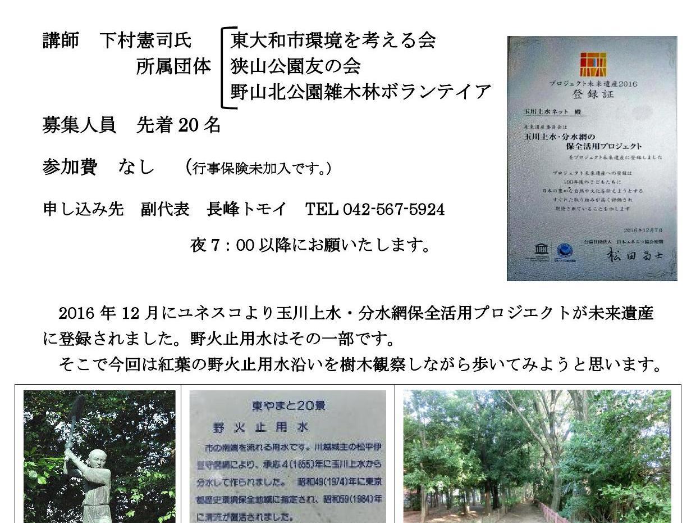 お知らせ!野火止用水樹木観察会!