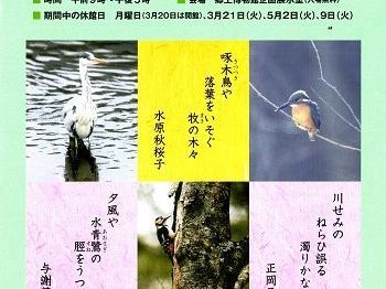 企画展示・歌に詠まれた鳥たち