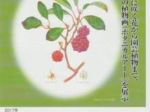 Botanical Art展 植物画を描く