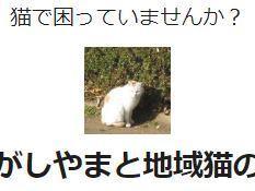 7/9のどっとネットカフェ